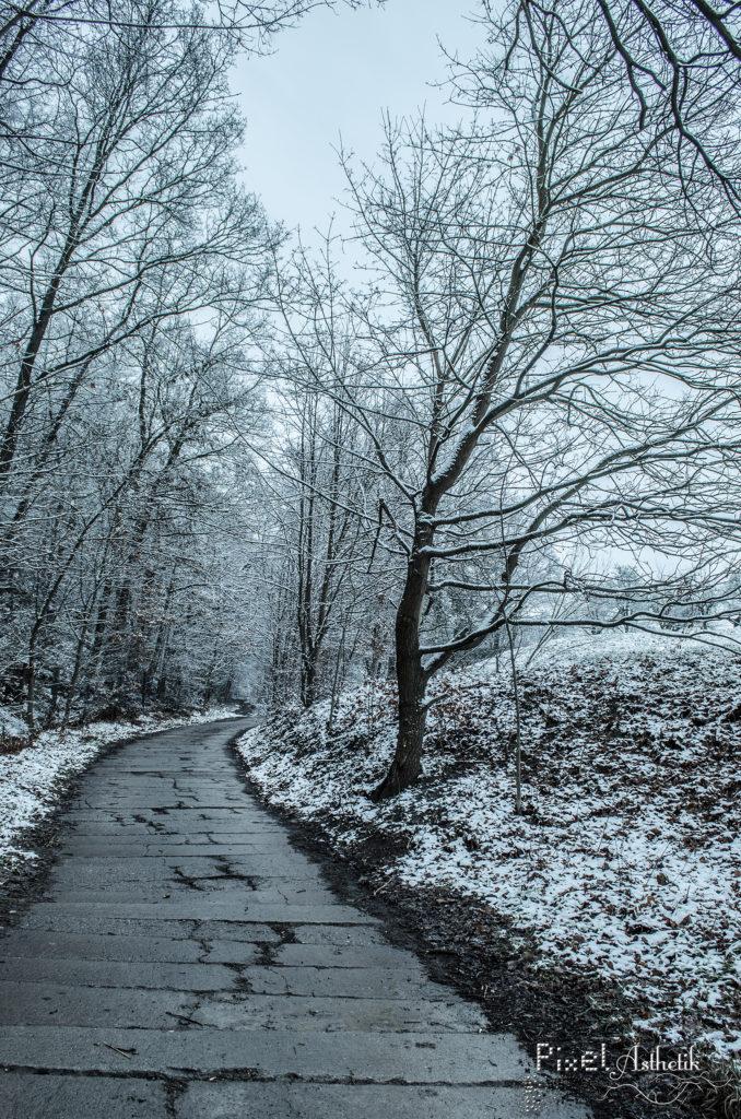 Weg in den Winter