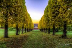 Allee zur Villa Bergfried