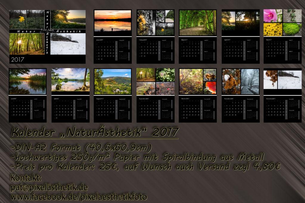 NaturÄsthetik Kalender 2017
